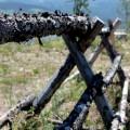Wyoming fence